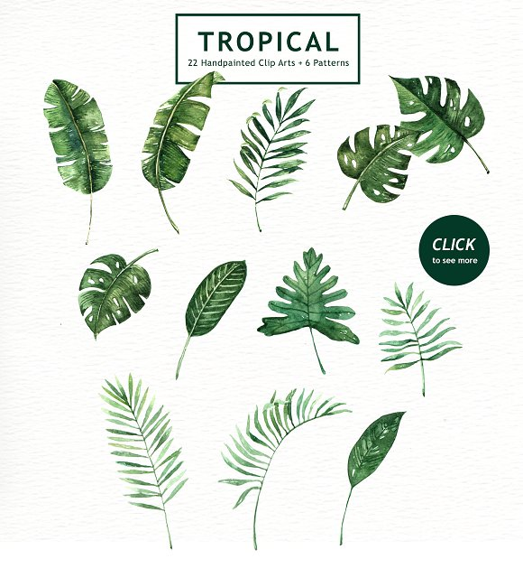 tropical leaves watercolor clipart illustrations creative market