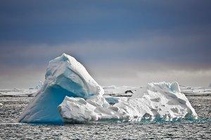 Antarctic iceberg in ocean
