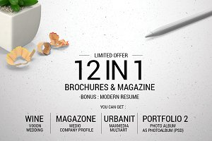 12 in 1 Brochure & Magazine + Bonus