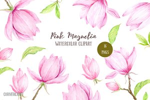Pink Magnolia Illustration