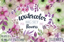 Big set of watercolor flowers