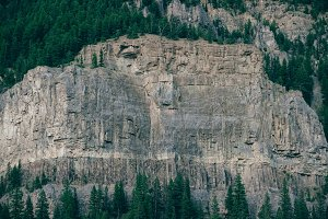 Cliff Face And Forest