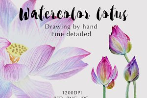 Watercolor lotuses collection