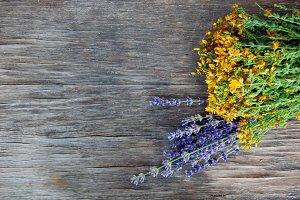 Wintercress & Lavender