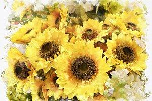 watercolor sunflower effect