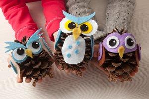 Pine cones and felt craft