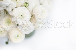 KATEMAXSTOCK Styled Stock Photo #830