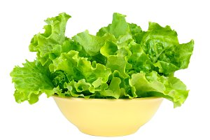 Lettuce leaves in bowl