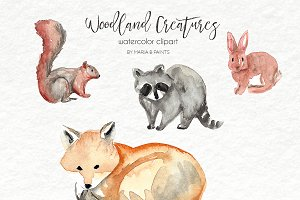 Watercolor Clip Art - Forest Animals