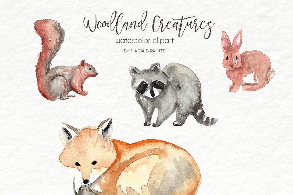 Watercolor Clip Art Forest Animals Illustrations