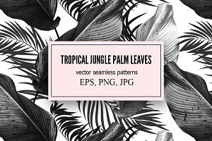 Tropical palm leaves vector patterns