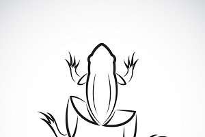 Vector image of an frog design