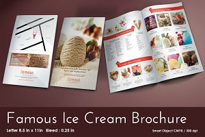 Famous Ice Cream Brochure