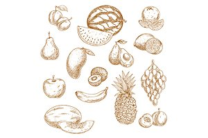 Vintage sketches of fruits