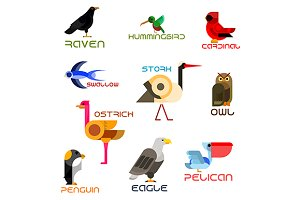 Colorful birds flat icons