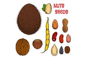 Almond, hazelnut, walnut, pistachio