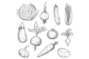 Engraving stylized veggies
