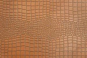 Skin of Crocodile texture