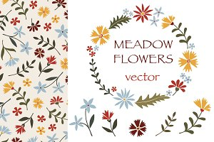 Meadow flowers - vector