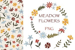 Meadow flowers - PNG