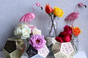 flamingo and roses