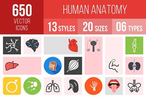 650 Human Anatomy Icons