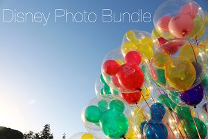 Disneyside Photo Bundle