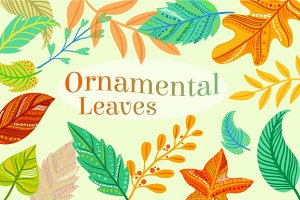 Ornamental Leaves