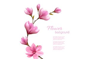 Nature Background With Pink Magnolia
