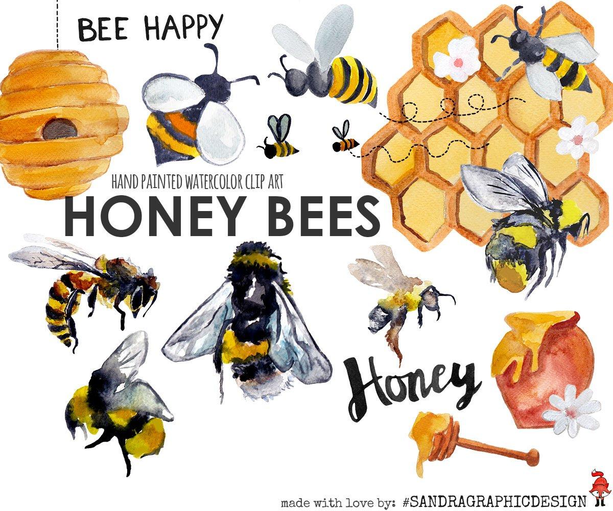 Honey bee scrapbook Photos, Graphics, Fonts, Themes, Templates ...