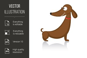 Cartoon funny dog breed dachshund