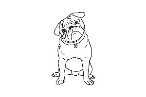 Pug puppy illustration