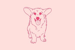 Corgi puppy illustration