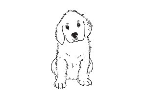 Retriever puppy illustration