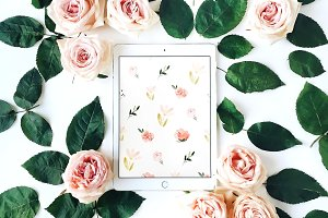 Tablet & roses