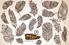 Hand drawn boho feathers