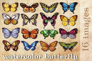 "A set of ""watercolor butterfly"""