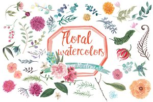Floral watercolors