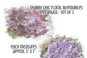 Shabby Chic Floral Hydrangea Overlay