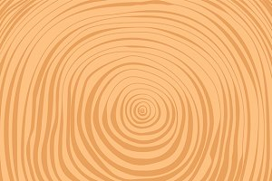 Crosscut timber tree rings