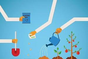 Planting timeline infographics