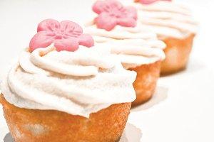 Cupcake + Pink Flower