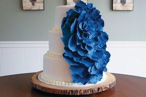 Cake + Blue Carnation