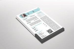 Flexia Resume Template Design