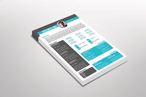 Bendly Resume Template Design