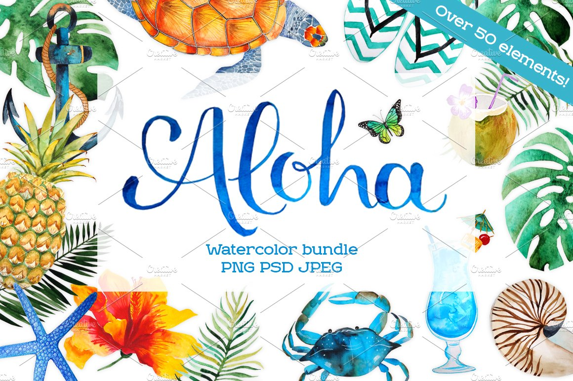 Aloha Watercolor Bundle Illustrations Creative Market