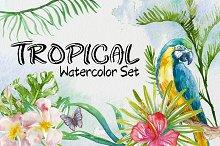 Tropical Watercolor Set