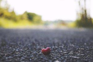 Berry Crossing