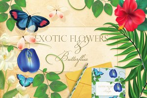 Exotic flowers and butterflies