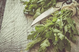 Selection of fresh herbs on rustic background